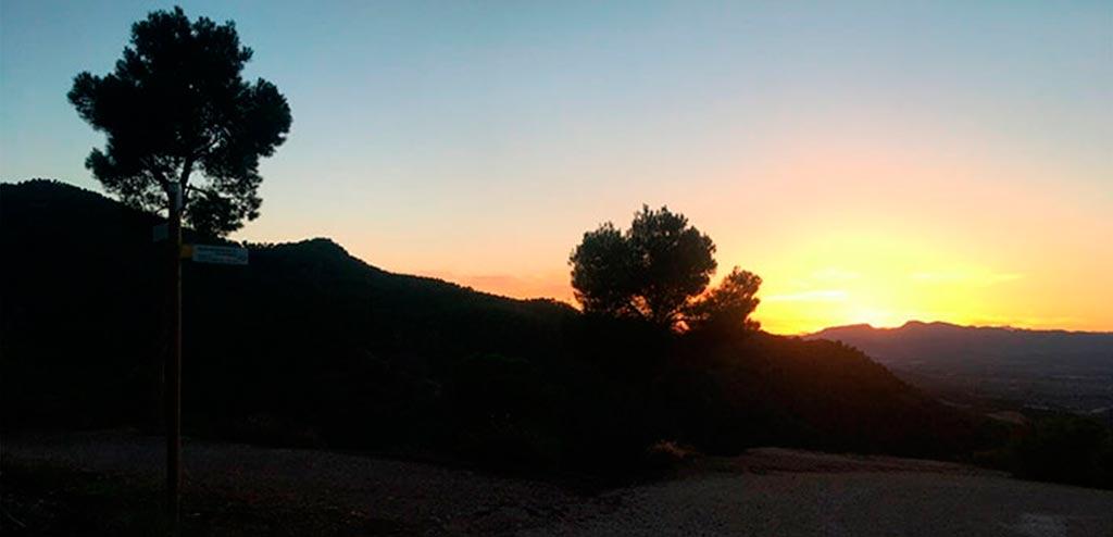 Living in Murcia