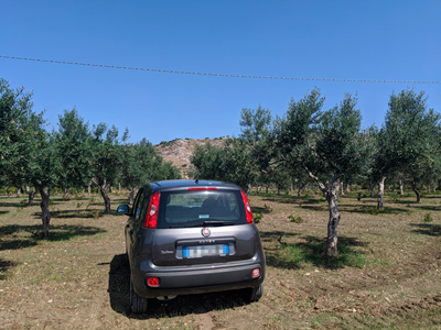Transportation in Spain by renting a car