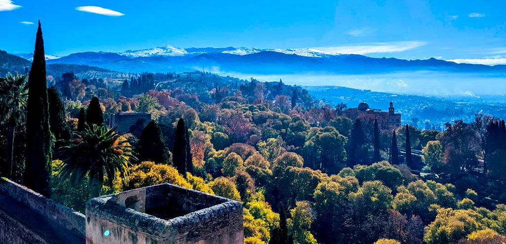 Alhambra mountains and Forests in winter Granada